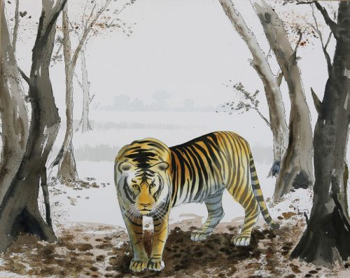 111-tiger-28-12-x-22-12-watercolor-by-terrance-taylor-235